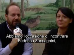 Federica Zaccagnini