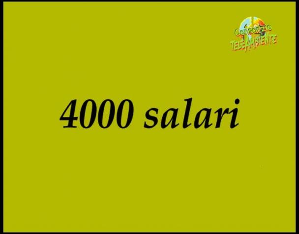 4000-salari