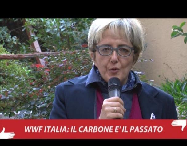 wwf-italia-il-carbone-e-il-passato