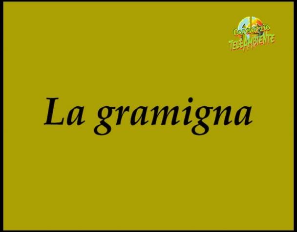 la-gramigna