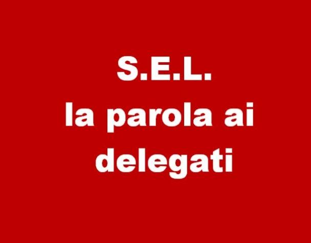 sel-partito-transitorio