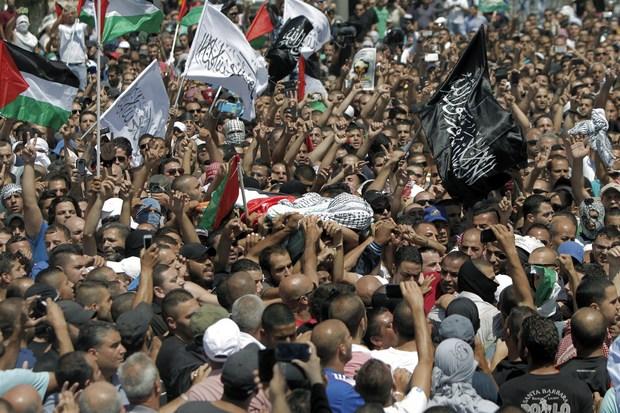 PALESTINA : L'Europa si indigni ed intervenga – Un ponte per