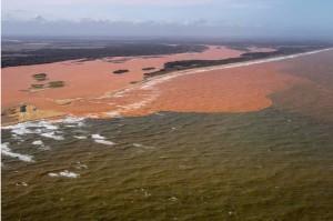 Rio Doce Amazzonia