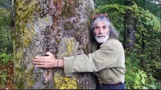 ambiente-il-21-novembre-abbracciamo-un-albero