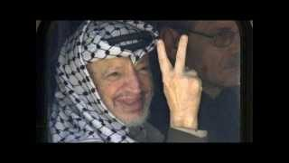 free-palestine-stop-gaza-genocide