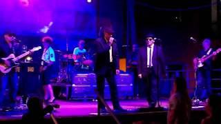 i-blues-brothers-a-cerro-maggiore-italy-2-of-2
