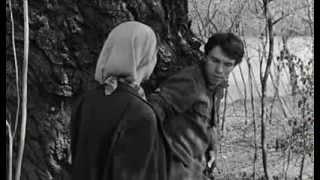 kapo-1959-regia-di-gillo-pontecorvo