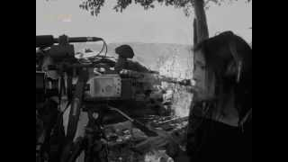las-mujeres-rebeldes-trailer