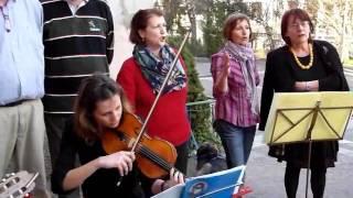 or-che-innalzato-e-lalbero-www-coroingrato-it