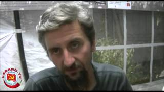 spazi-sociali-intervista-ad-ascanio-celestini