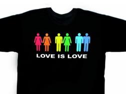 Love is Love per le adozioni Gay