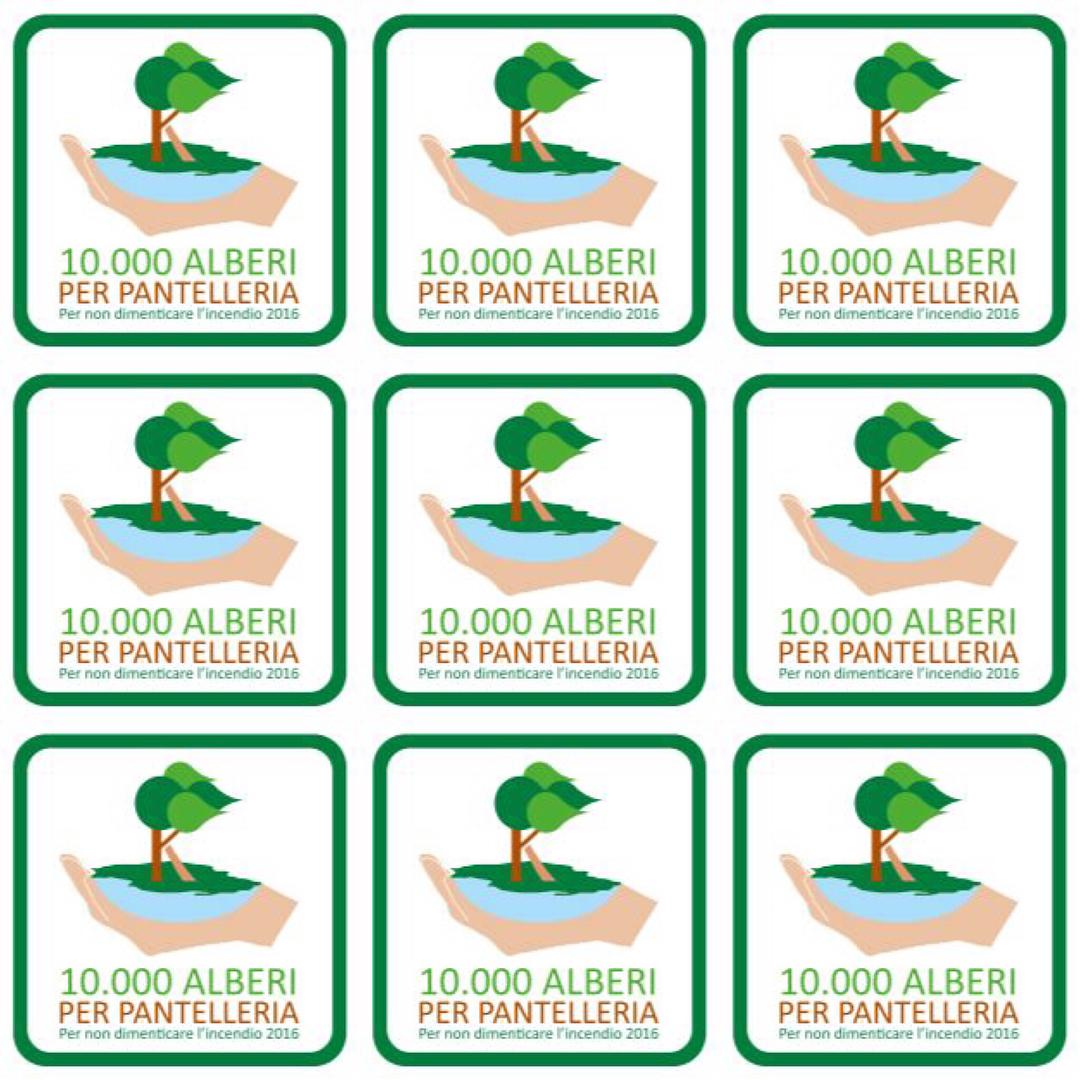 10.000 Alberi per Pantelleria, un crowdfunding per riforestare l'isola