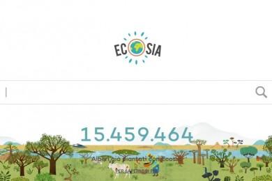 Ecosia ricerca