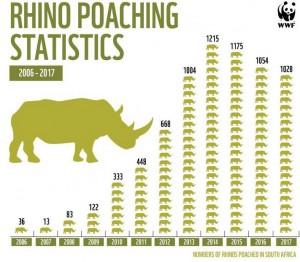 Rinoceronte estinzione
