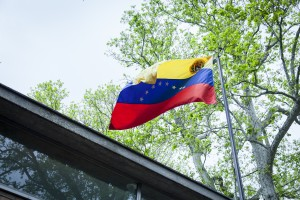 Biennale 2019 padiglione Venezuela 9